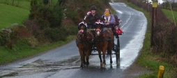 Arran Carriage Hire